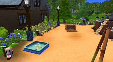 Play ground with pool, dollhouse,horseshoes, pirate ship, monkey bars, waterslide, and swings.