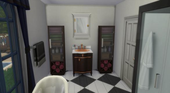 Bathroom for Downstairs Bedroom